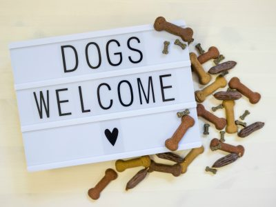 Dog Friendly Lodges in Wales